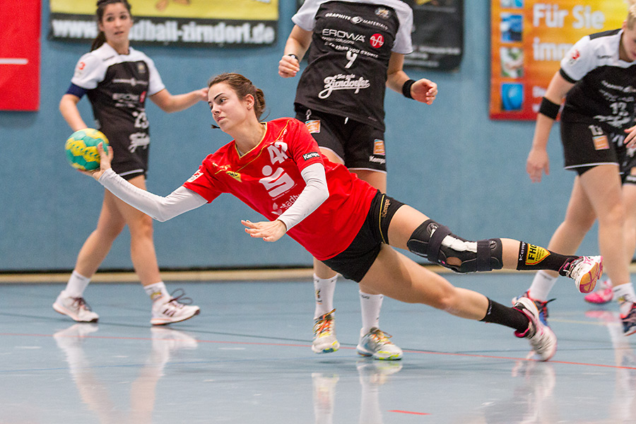 Handball Zirndorf
