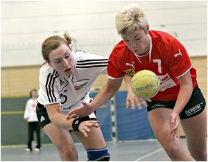 Newsarchiv 2009 - Frankfurter Handball Club - 3  Liga